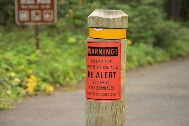 Mountain Lion warning, Apgar Village, Glacier National Park, Montana, August 28, 2014