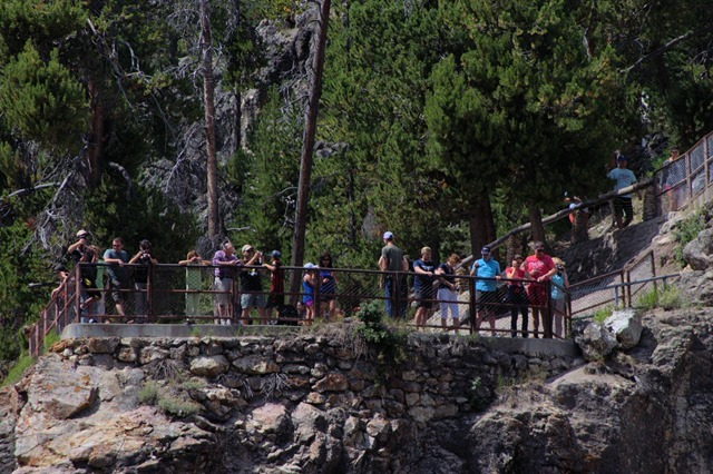 Observation platform at Brink of the Lower Falls of the Yellowstone
