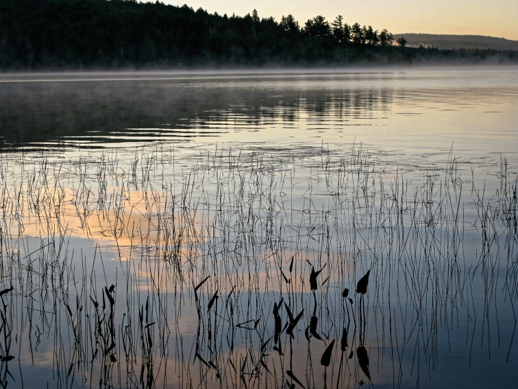 Lake of Two Rivers, from Killarney Lodge; Algonquin Provincial Park, Ontario Canada