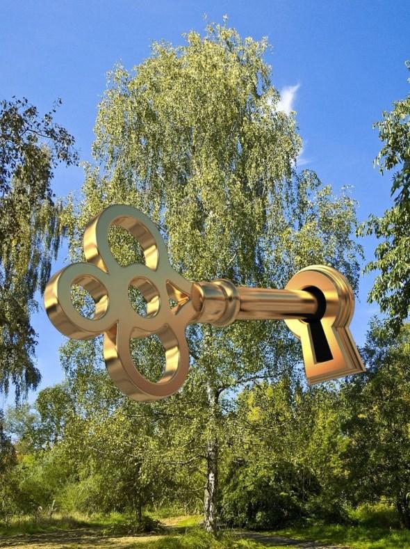 Die 3 Schlachten am Birkenbaum 2019 / 2026 – Prophetien entschlüsselt