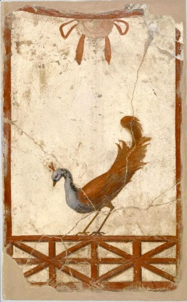 Wall Fragment with a Peacock. Roman, about 70 CE Via Getty