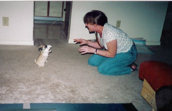 Little baby Wednesday, circa 2000