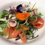 Home smoked salmon with fennel and radish