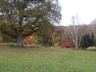 RHS Garden Rosemoor