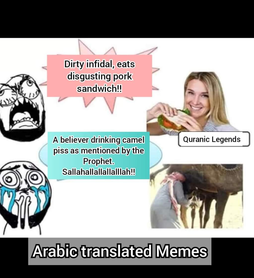 kufar eating pork pig sandwich disgusting drinking camel piss logic satire prophet muhmmad mohammad