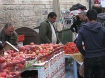 14. fruit for sale