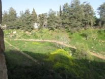 08. wadi behind house of Hadassah