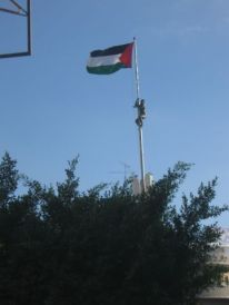 10. climbing to the Palestinian flag