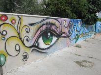 11. an eye