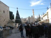 06. the Christmastree in Bethlehem
