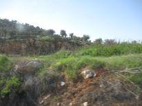 04. landscape