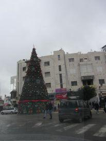 07-christmas-tree-in-ramallah
