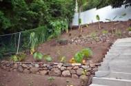 Dry_Stone_Walls_GRW_0339