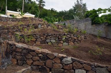 Dry_Stone_Walls_GRW_0347
