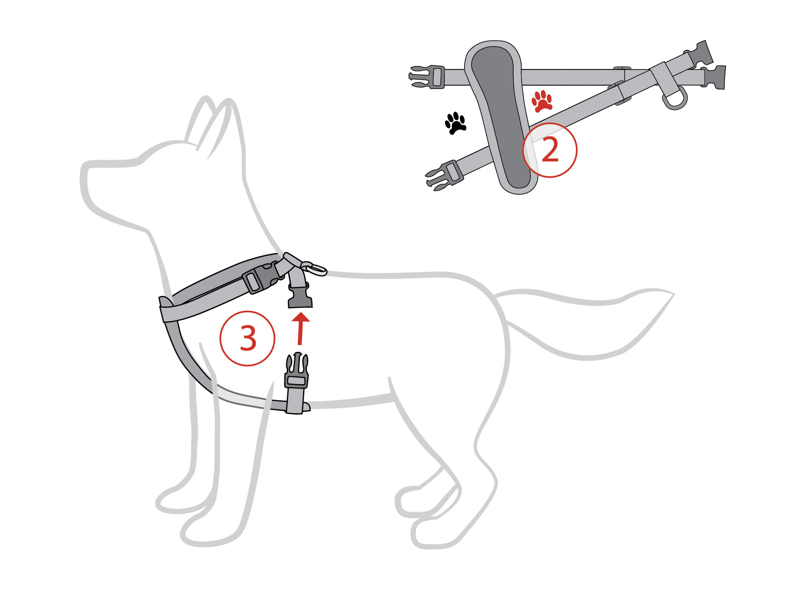 Designer Dog Harness