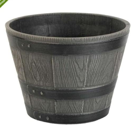 Green Ship planter Pots exoticplantsouq.ae