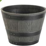 Green Ship planter Pots exoticplantsouq.ae