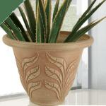 Green Ship plant Pots exoticplantsouq.ae