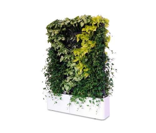 Moving Hedge   Vertical Garden