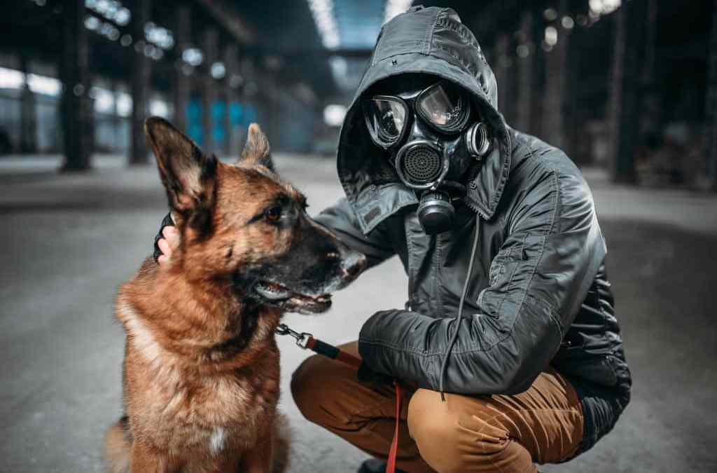 Dogs and Vaping - The Dangers of e-Liquid for Dogs