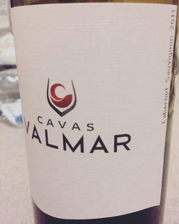 Cavas Valmar Cabernet Sauvignon 2011 Mexican Wine