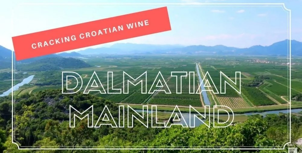 Cracking Croatian Wine Dalmatian Mainland