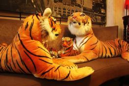 Triple Tiger Hostel Triple Tiger Hostel
