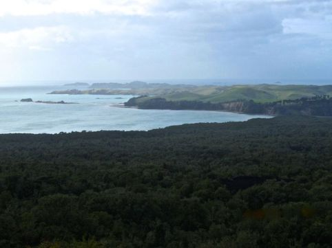 View of Motutapu from trail to Rangitoto summit