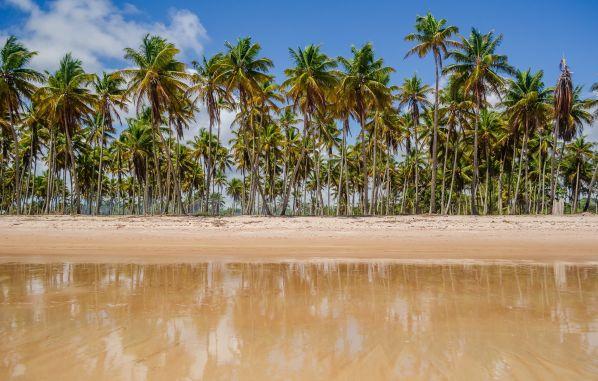 Paraísos de Brasil