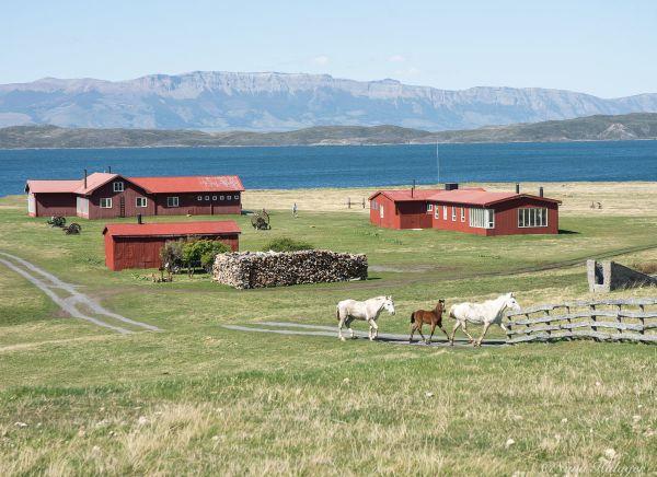 Aventura en Torres del Paine con auténtica experiencia patagónica
