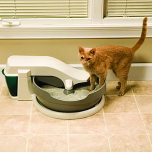 PetSafe Continuous Cleaning Automatic Litter Box