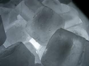 als ice bucket challenge statistics