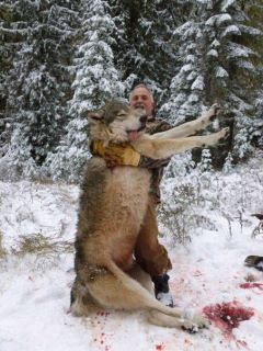 hunter with dead timber wolf