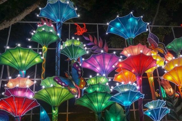 Dubai Garden Glow