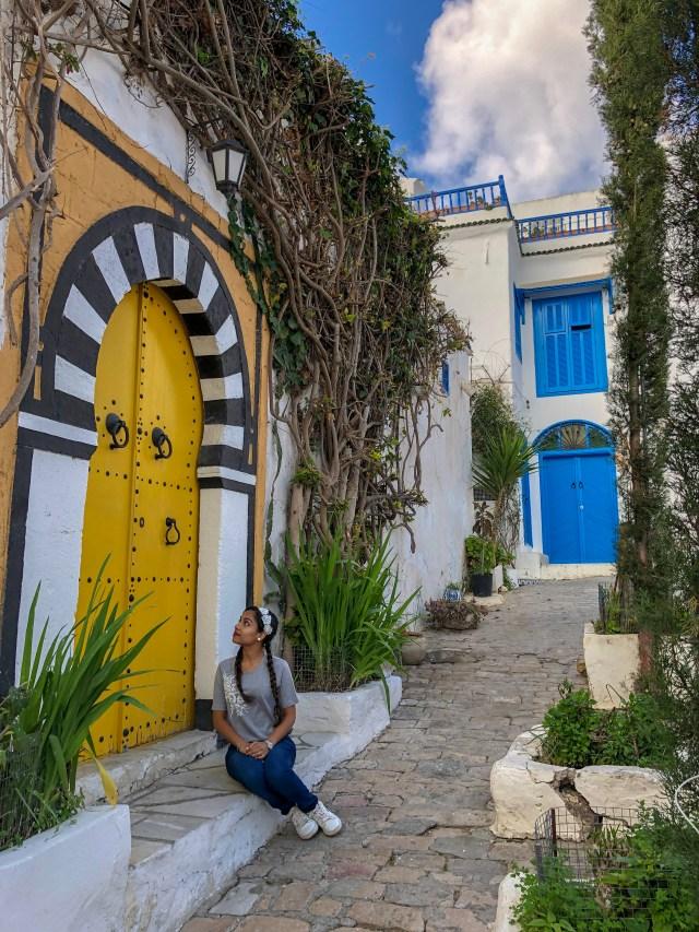 why go to tunisia