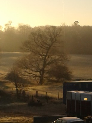 New Year's Morning on the Farm