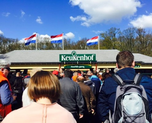 Keukenhof (Photo Katie Joy)