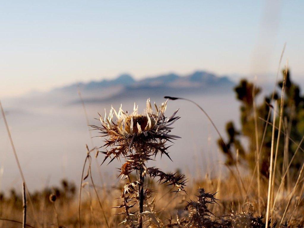 Majella Nationalpark Blick auf Gran Sasso Abruzzen