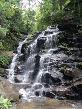 natürliche Wässerung