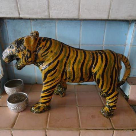 heiliger Tiger