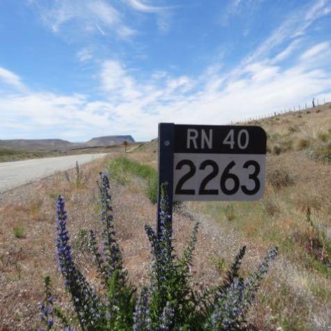RN 40 - die vielleicht längste Straße der Welt