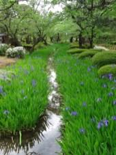 Bach in Kanazawa