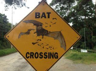 ein Straßenschild der besonderen Sorte