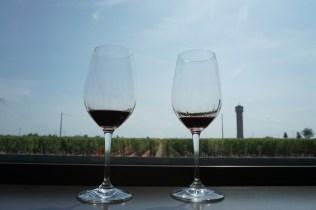 Weinverkostung im Chateau Pedesclaux