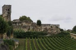 Wein bis zur Stadtmauer