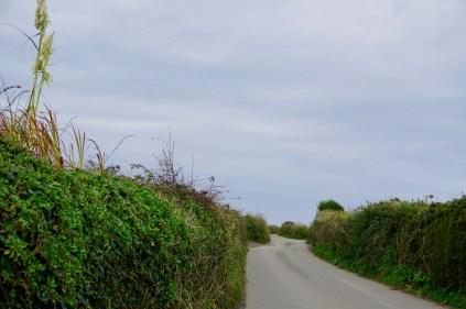 Kurvige Straße in Cornwall