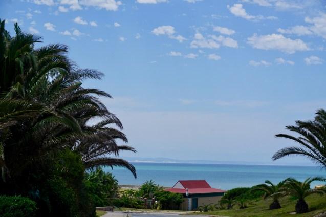 Blauer Himmel und Palmen