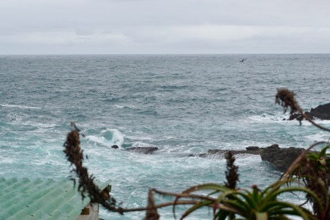 Garden Route National Park mit Wal-Beobachtung
