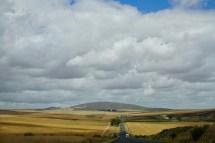 Südafrika Felder im November