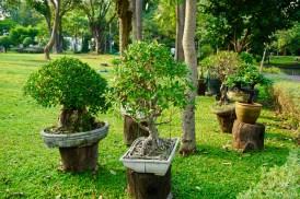 Eine Parkanlage in Thailand